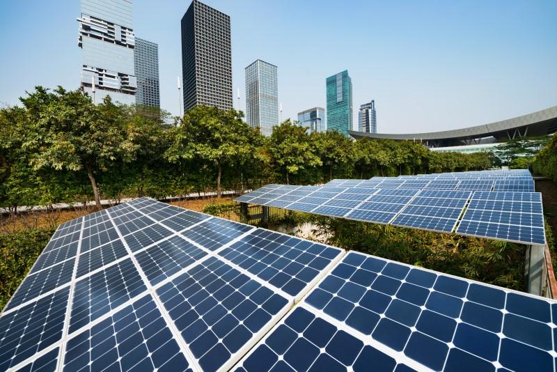 Contabilidade na Paraíba - Eite Contabilidade - Sustentabilidade empresarial – O que é e como sua empresa pode aplicá-la?