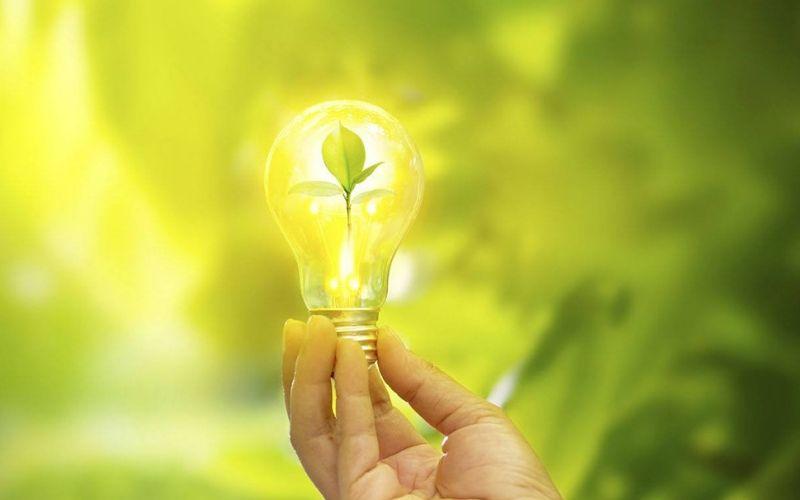 Design Sem Nome (26) - Eite Contabilidade - O que é um negócio sustentável?